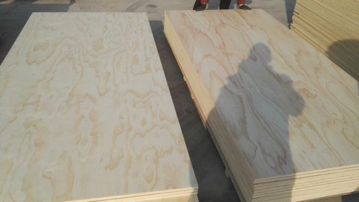 Chinese Radiata Pine Plywood B/C and C/C Grade