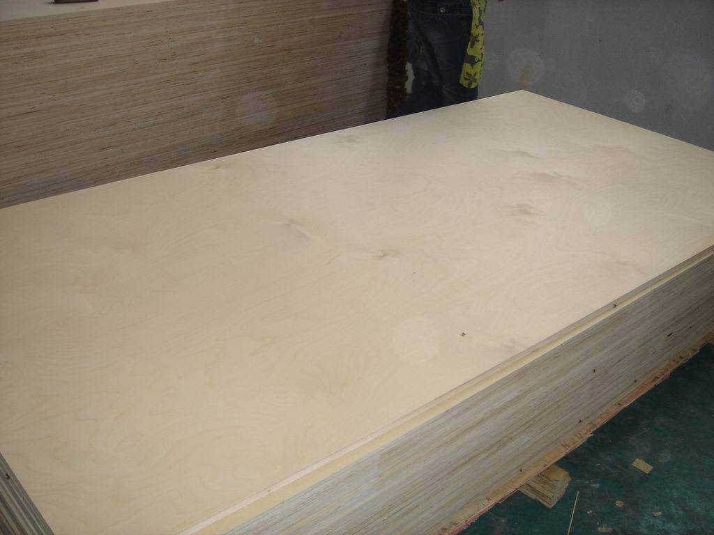 chinese-hardwood-white-birch-plywood.jpg