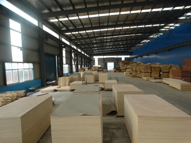 China Softwood Plywood ,Pine face and back ,selected grade ,exporting to the USA markets,Vietnam ,Mexico ,New Zealand ,Australia,UK and Canada markets .