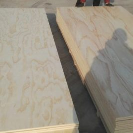 RADIATA PINE BC and CD ,Interior and EXTERIOR GRADE RADIATA PINE PLYWOOD