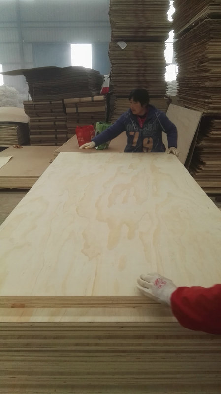 Hardwood Plywood( Okoume,Birch,Bingtangor ,Poplar,Keruing ,Pencil Cedar ,Bleached Poplar ,Natural Poplar,Red BIRCH ,and other tropical wood species ) ,Softwood Plywood (Agathis ,Radiata Pine ,Bleached Pine and Chinese Fir ) ,Film faced plywood ,LVB/LVL and other Lamination Plywood such as HPL plywood,melamine Paper Plywood