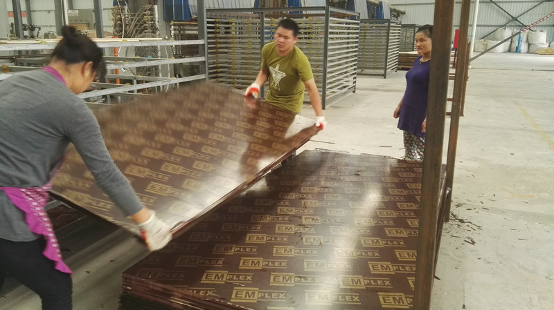 Xuzhou Mega Film faced plywood