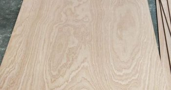 China Sapele (SAPELLI ) Plywood to South and Central America markets